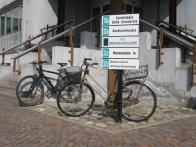 Biciclette legate dove capita all'interno del San Matteo