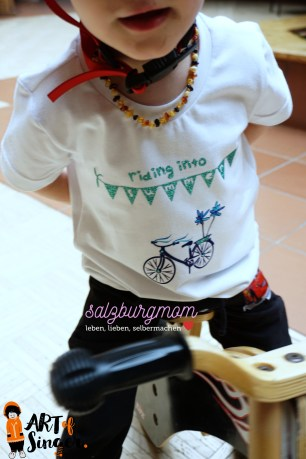 Fahrrad Shirt 2
