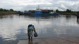 Femme au bord du fleuve Gambie