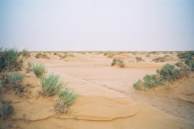 Le calme du désert...