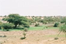 mr2002-10-sud-maure