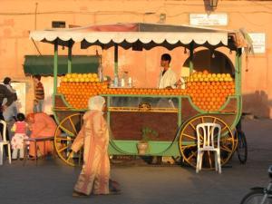 Galerie photos Marrakech 2009