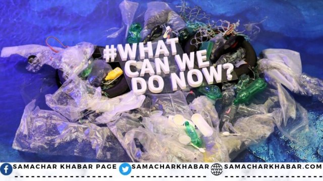 World Oceans Day Message