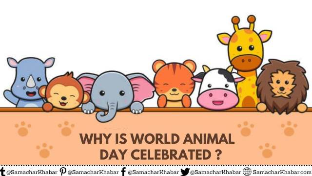 Why is World Animal Day Celebrated