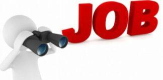shiksha naukri बिजली विभाग, नौकरी up government job 2017