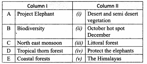 Samacheer Kalvi 10th Social Science Guide Geography Chapter 2 Climate and Natural Vegetation of India 1