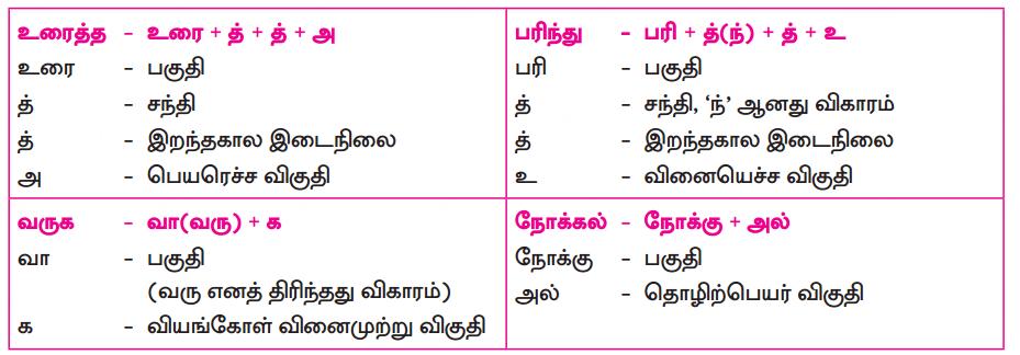 Samacheer Kalvi 10th Tamil Guide Chapter 3.2 காசிக்காண்டம் - 1