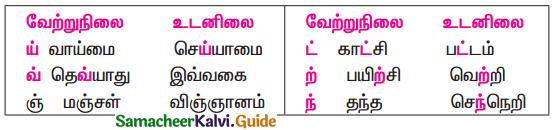 Samacheer Kalvi 11th Tamil Guide Chapter 2.7 புணர்ச்சிவிதிகள் - 1