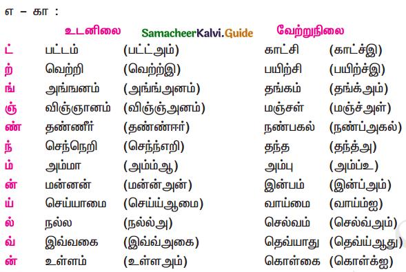 Samacheer Kalvi 11th Tamil Guide Chapter 2.7 புணர்ச்சிவிதிகள் - 2