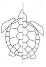 Samacheer Kalvi 4th Maths Guide Term 2 Chapter 1 Geometry InText Questiond 5