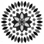 Samacheer Kalvi 4th Maths Guide Term 3 Chapter 1 Geometry Ex 1.1 11