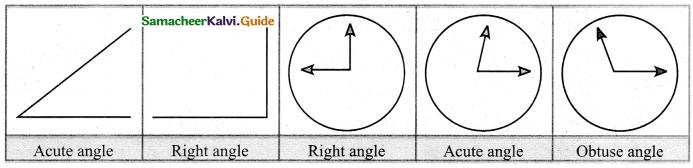 Samacheer Kalvi 5th Maths Guide Term 1 Chapter 1 Geometry 43