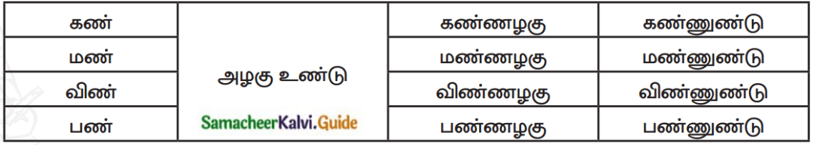 Samacheer Kalvi 7th Tamil Guide Chapter 3.5 வழக்கு 5