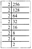 Samacheer Kalvi 8th Maths Guide Answers Chapter 1 Numbers Ex 1.4 7