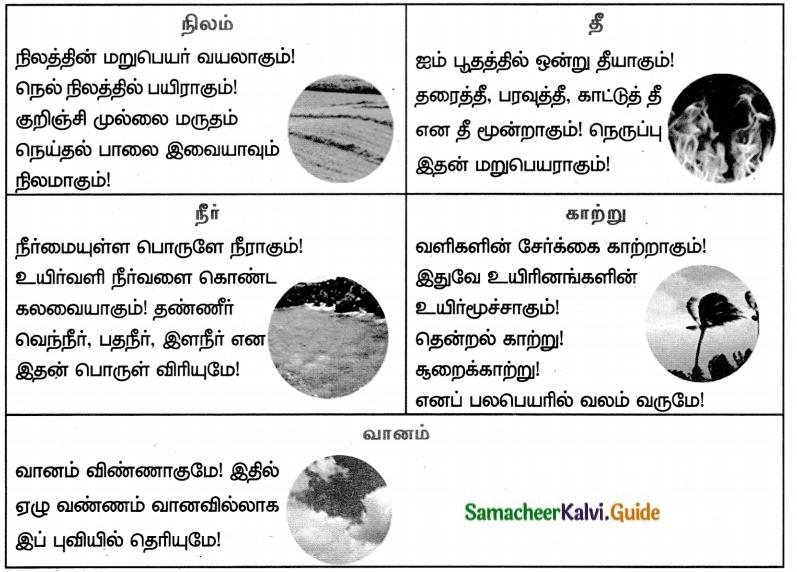 Samacheer Kalvi 8th Tamil Guide Chapter 1.2 தமிழ்மொழி மரபு 1