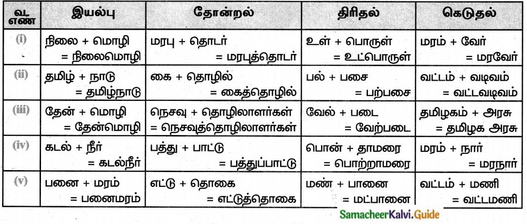 Samacheer Kalvi 8th Tamil Guide Chapter 6.5 புணர்ச்சி 1