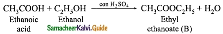 Samacheer Kalvi 10th Science Guide Chapter 11 Carbon and its Compounds 13