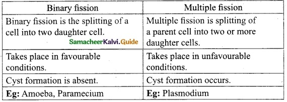 Samacheer Kalvi 10th Science Guide Chapter 17 Reproduction in Plants and Animals 3