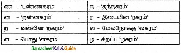 Samacheer Kalvi 5th Tamil Guide Chapter 1.4 மரபுச்சொற்கள் - 14