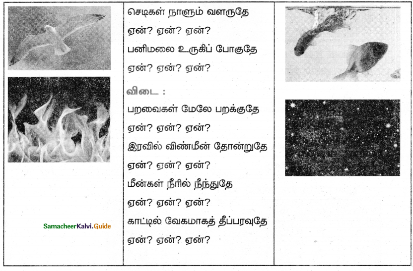Samacheer Kalvi 5th Tamil Guide Chapter 4.4 மூவிடப்பெயர்கள் - 3