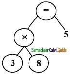 Samacheer Kalvi 6th Maths Guide Term 2 Chapter 5 Information Processing Ex 5.2 8