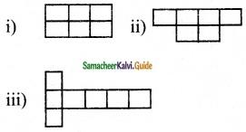 Samacheer Kalvi 6th Maths Guide Term 3 Chapter 4 Symmetry Ex 4.2 7