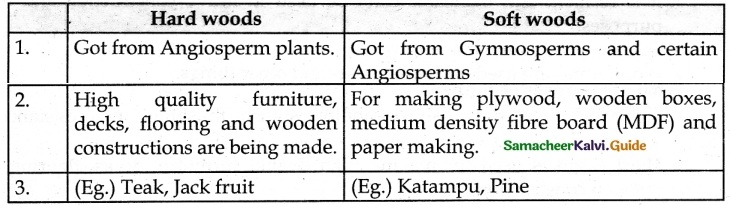 Samacheer Kalvi 6th Science Guide Term 3 Chapter 5 Plants in Daily Life 5