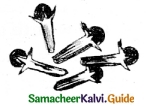 Samacheer Kalvi 6th Science Guide Term 3 Chapter 5 Plants in Daily Life 9