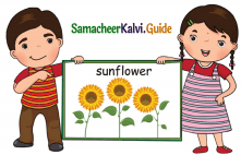 Samacheer Kalvi 5th English Guide Term 1 Prose Chapter 1 Earth, The Desolated Home 2