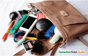 Samacheer Kalvi 11th English Guide Prose Chapter 6 The Accidental Tourist 2