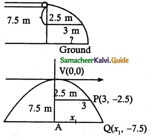 Samacheer Kalvi 12th Maths Guide Chapter 5 Two Dimensional Analytical Geometry - II Ex 5.5 13