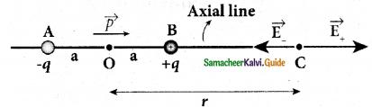 Samacheer Kalvi 12th Physics Guide Chapter 1 Electrostatics 19