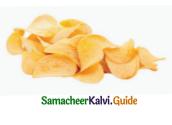Samacheer Kalvi 4th English Guide Term 2 poem 2 BALA SPING MAJIC 9