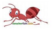 Samacheer Kalvi 4th English Guide Term 2 poem 2 Be Honest 14