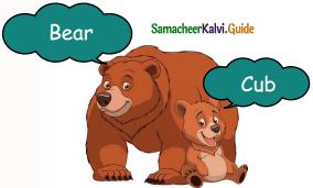 Samacheer Kalvi 5th English Guide Term 3 Prose Chapter 3 The Monster Tree 2