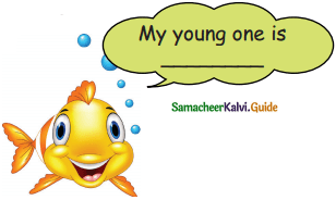 Samacheer Kalvi 5th English Guide Term 3 Prose Chapter 3 The Monster Tree 21
