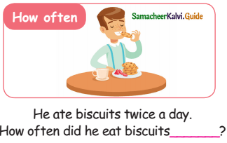 Samacheer Kalvi 5th English Guide Term 3 poem 1 Why Questions 9
