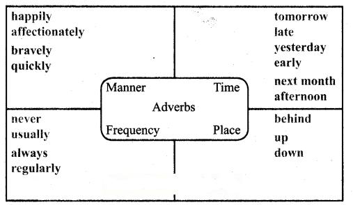 Samacheer Kalvi 6th English Guide Term 3 Prose 2 That Sunday Morning 13