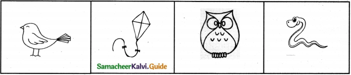 Samacheer Kalvi 7th English Guide Term 2 Supplementary Chapter 2 Naya – The Home of Chitrakaars 6