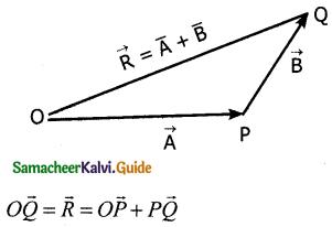Samacheer Kalvi 11th Physics Guide Chapter 2 Kinematics 20