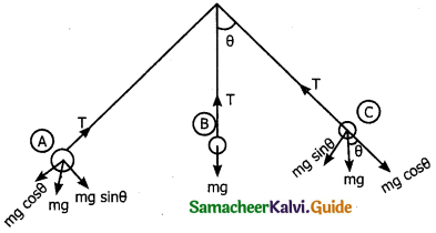 Samacheer Kalvi 11th Physics Guide Chapter 3 Laws of Motion 39