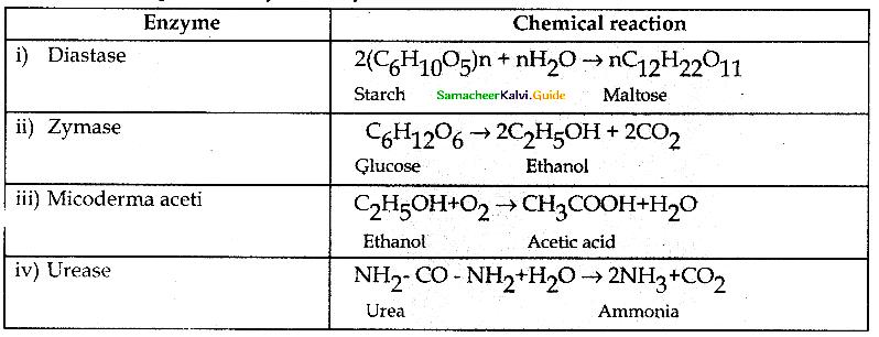 Samacheer Kalvi 12th Chemistry Guide Chapter 10 Surface Chemistry 19