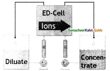Samacheer Kalvi 12th Chemistry Guide Chapter 10 Surface Chemistry 26