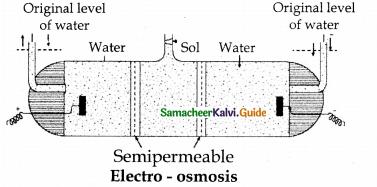 Samacheer Kalvi 12th Chemistry Guide Chapter 10 Surface Chemistry 8