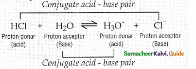 Samacheer Kalvi 12th Chemistry Guide Chapter 8 Ionic Equilibrium 57