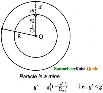 Samacheer Kalvi 11th Physics Guide Chapter 6 Gravitation 25