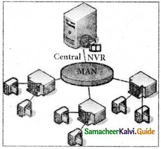 Samacheer Kalvi 11th Computer Applications Guide Chapter 9 Introduction to Internet and Email 4