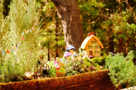 Fairy Weekend in the Sequoias at Camp Nelson 05 fairy garden terrarium