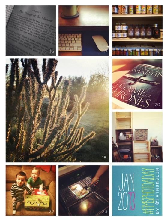 fmsphotoaday-january-2013-collage3