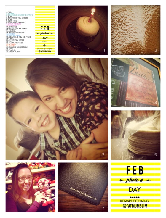 fmsphotoaday-february-2013-collage1